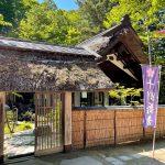 【十勝蕎麦 狸庵】紅桜公園内にある和の素敵な空間で美味しい蕎麦!